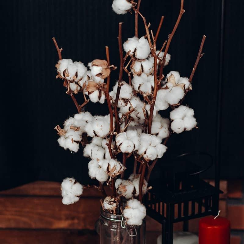 Fleur de coton - Parfum pour bougies Parfum volume 30 ml