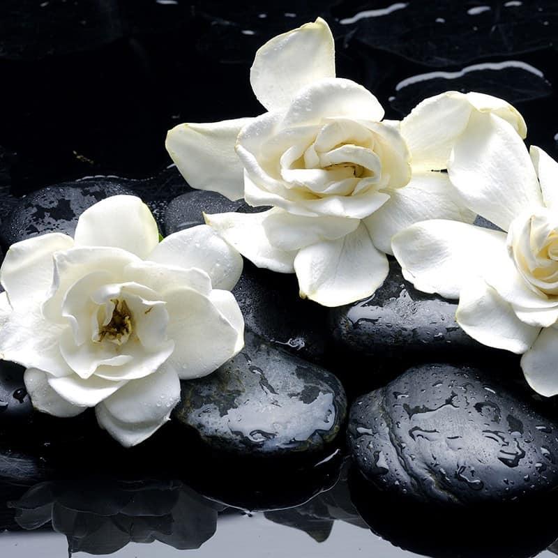 Gardenia - Parfum pour bougies Parfum volume 30 ml